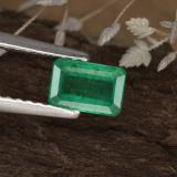 thumb image of 0.6ct Octagon Step Cut Green Emerald (ID: 319900)