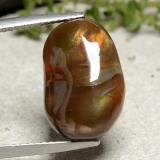 thumb image of 7.6ct Fancy Cabochon Multicolor Fire Agate (ID: 487027)