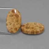 coral gemstones natural precious coral gem amp jewelry