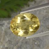 thumb image of 1.5ct Oval Facet Yellow Golden Beryl (ID: 305841)