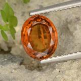 thumb image of 1.8ct Oval Facet Orange Hessonite Garnet (ID: 497093)