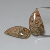 thumb image of 20.5ct Fancy Cabochon Multicolor Jasper (ID: 391155)