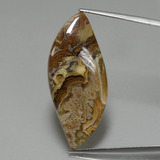 thumb image of 22.3ct Fancy Cabochon Multicolor Jasper (ID: 396544)