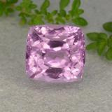thumb image of 11.8ct Cushion-Cut Pink Kunzite (ID: 482032)