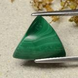 thumb image of 8.1ct Trillion Shape Sugarloaf Cabochon Multicolor Green Malachite (ID: 484488)