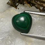 thumb image of 4.8ct Heart Cabochon Medium Green Malachite (ID: 494268)
