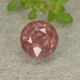 thumb image of 1.7ct Round Facet Brick Red Malaya Garnet (ID: 498819)