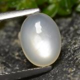 thumb image of 1ct Oval Cabochon Cream Moonstone (ID: 479822)