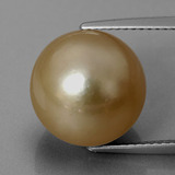 thumb image of 13.5ct Spherical Golden Pearl (ID: 335845)
