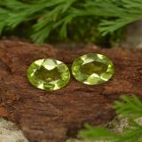 thumb image of 1.4ct Oval Facet Lively Green Peridot (ID: 461709)
