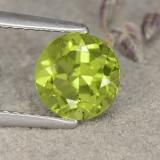 thumb image of 1.5ct Round Facet Lively Green Peridot (ID: 481009)