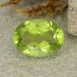 thumb image of 1.4ct Oval Facet Lively Green Peridot (ID: 484215)