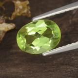 thumb image of 1.3ct Oval Facet Lively Green Peridot (ID: 484347)