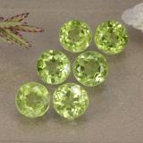 thumb image of 3ct Round Facet Lively Green Peridot (ID: 489419)