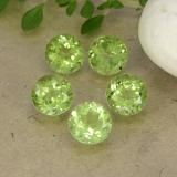 thumb image of 0.9ct Round Facet Light Green Peridot (ID: 490910)