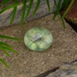 thumb image of 4.8ct Oval Checkerboard Green Prehnite (ID: 217323)