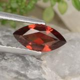 thumb image of 1.2ct Marquise Facet Red Pyrope Garnet (ID: 478952)