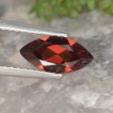 thumb image of 1ct Marquise Facet Red Pyrope Garnet (ID: 478954)