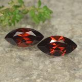 thumb image of 1.4ct Marquise Facet Red Pyrope Garnet (ID: 479085)