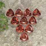 thumb image of 2.8ct Trillion Facet Red Pyrope Garnet (ID: 479349)