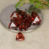thumb image of 0.3ct Trillion Facet Red Pyrope Garnet (ID: 479757)