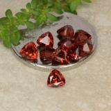 thumb image of 3.1ct Trillion Facet Red Pyrope Garnet (ID: 479765)