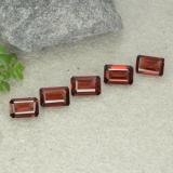 thumb image of 2.9ct Octagon Step Cut Red Pyrope Garnet (ID: 480935)
