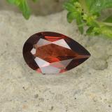 thumb image of 0.8ct Pear Facet Red Pyrope Garnet (ID: 488138)