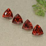 thumb image of 1ct Trillion Facet Currant Red Pyrope Garnet (ID: 498801)