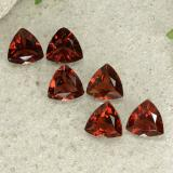 thumb image of 0.8ct Trillion Facet Deep Red Pyrope Garnet (ID: 499036)