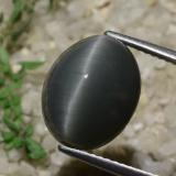 7.70 ct Oval Cabochon Black Quartz Cat's Eye Gem 12.93 mm x 10.6 mm (Photo B)