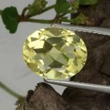 thumb image of 3.2ct Oval Facet Lemon Quartz (ID: 423328)