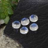 thumb image of 0.6ct Round Cabochon Blue White Rainbow Moonstone (ID: 468069)