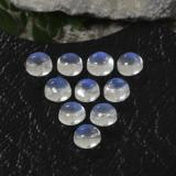 thumb image of 1.4ct Round Cabochon Blue White Rainbow Moonstone (ID: 468085)