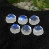 thumb image of 0.8ct Round Cabochon Blue White Rainbow Moonstone (ID: 468141)