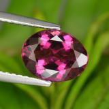 thumb image of 1.6ct Oval Facet Purplish Red Rubellite Tourmaline (ID: 429652)