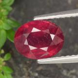 thumb image of 2ct Oval Facet Red Ruby (ID: 465273)