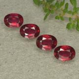 thumb image of 1.3ct Oval Facet Bright Red Ruby (ID: 495344)