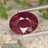 thumb image of 2ct Oval Facet Pinkish Red Ruby (ID: 496309)