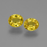 thumb image of 1.5ct Oval Facet Yellow Golden Sapphire (ID: 443545)