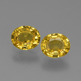 thumb image of 1.5ct Oval Facet Yellow Golden Sapphire (ID: 443607)