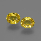 thumb image of 1.5ct Oval Facet Yellow Golden Sapphire (ID: 443800)