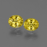 thumb image of 1.6ct Oval Facet Yellow Golden Sapphire (ID: 443808)