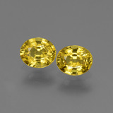 thumb image of 1.4ct Oval Facet Yellow Golden Sapphire (ID: 443823)