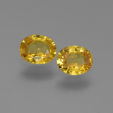 thumb image of 1.3ct Oval Facet Yellow Golden Sapphire (ID: 444178)