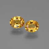 thumb image of 1.4ct Oval Facet Golden Yellow Sapphire (ID: 444684)