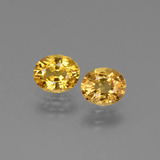 thumb image of 1.5ct Oval Facet Golden Yellow Sapphire (ID: 444687)