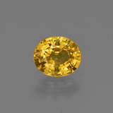 thumb image of 0.7ct Oval Facet Golden Yellow Sapphire (ID: 444750)