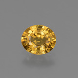 thumb image of 0.7ct Oval Facet Golden Yellow Sapphire (ID: 444752)