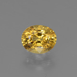 thumb image of 0.8ct Oval Facet Golden Yellow Sapphire (ID: 444759)